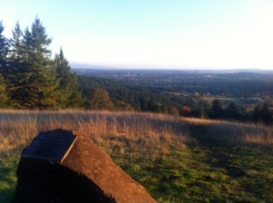 Hiked up a trail to this breathtaking view at sunset in Corvallis