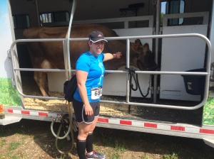 For this race, the cows and I were moo-ving at about the same pace.
