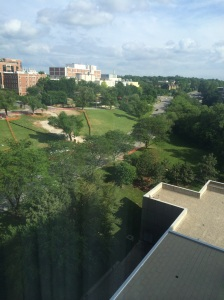 Our view from the Sheraton hotel. We look down on Gillham Rd, which is THE actual Hospital Hill. It's a loooong one.