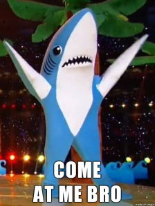 Come at Me Bro Shark